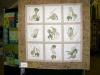 montague-exhib2014-016
